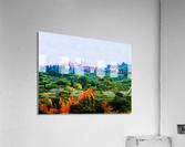 Panicale in Fall  Acrylic Print