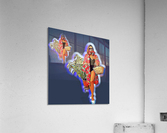 Ninja Returns  Acrylic Print