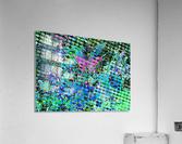 F1004B67 D81E 43B5 A105 DB01FFFCF8F4  Acrylic Print