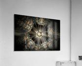 Blink  Acrylic Print