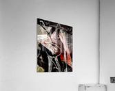 P A R I S  Acrylic Print