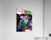 A Z E A  Acrylic Print