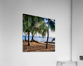 Sailboat And Palms  Acrylic Print