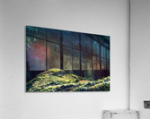 Lonesome Tree  Acrylic Print
