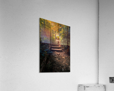 Climbing Colors  Acrylic Print