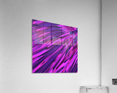 A.P.Polo - Cyberspace  Acrylic Print