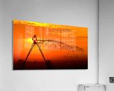 Sprinkler or Mist Monster  Acrylic Print