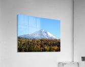 Mt Shasta in Autumn  Acrylic Print