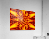 Fire Flowers 104  Acrylic Print
