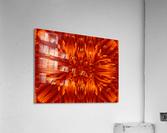 Fire Flowers 190  Acrylic Print