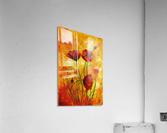 Edit Voros Red Poppies 006  Acrylic Print