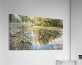 Monet style 4  Acrylic Print