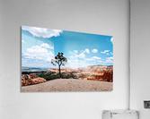 Bryce Canyon V  Acrylic Print