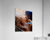 Sunkissed II  Acrylic Print