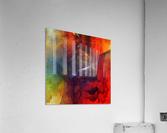 Cazimir dream   Acrylic Print