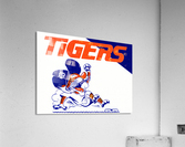 Tigers Cartoon  Acrylic Print