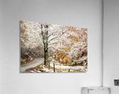 October snow Canaan Valley WVa  Acrylic Print