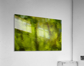 Flowing reflections spring  Acrylic Print