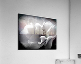 Linen   Acrylic Print