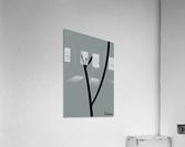 FrontView 14.C1  Acrylic Print