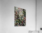 Linear Geometric Abstract   Acrylic Print