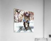 Tux with the Fairies  Acrylic Print