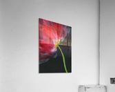 Fantastical Flower  Acrylic Print