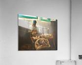 The Nutmeg Sorter  Acrylic Print