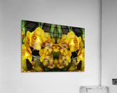 flower65  Acrylic Print