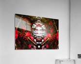 flower83  Acrylic Print