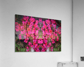 flower29  Acrylic Print