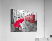 Dog with umbrella on London city street  Acrylic Print