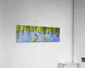 Bicycle in spring forest  Acrylic Print