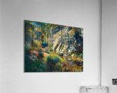 Ojai canyons  Acrylic Print