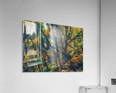Forrest hike  Acrylic Print