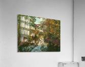 Autumn forrest  Acrylic Print