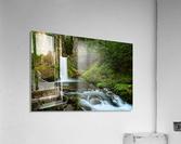 Native Flow  Acrylic Print