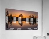 Peek Through  Acrylic Print