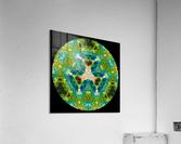 MDN13   Acrylic Print