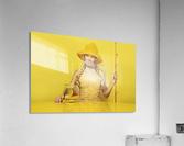 Highliner I  Acrylic Print