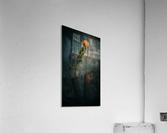 Zen 2  Acrylic Print