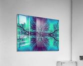 Portal  4   Acrylic Print