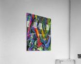 Dolidra  Acrylic Print