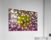 Colours  Acrylic Print