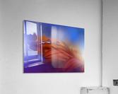Metamorphosis by Juliana Nan   Acrylic Print