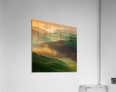Morning Dreams  Acrylic Print