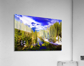DSC00906  Acrylic Print