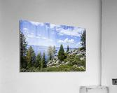 Spring at Lake Tahoe 5 of 7  Acrylic Print