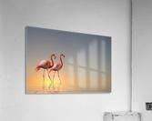 Serenity II  Acrylic Print