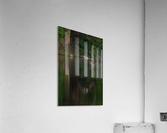 Wesley Allen Shaw 00747  Acrylic Print